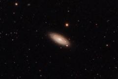 NGC2841 Galaxy