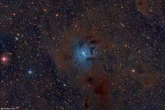 NGC7023 - The Iris Nebula